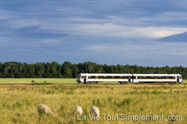 Navette ferroviaire de Charlevoix | Escapades et idées vacances au Québec pour toute la famille